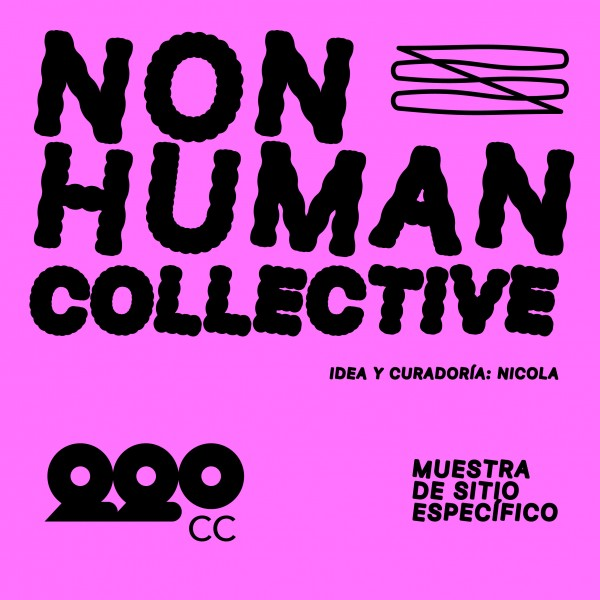 NON HUMAN COLLECTIVE